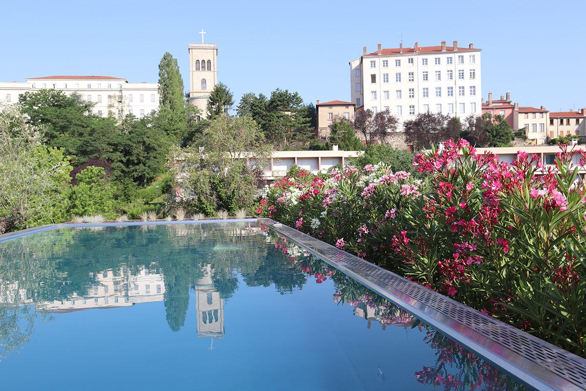 piscine avec abords fleuris en terrasse rooftop par un paysagiste à Lyon