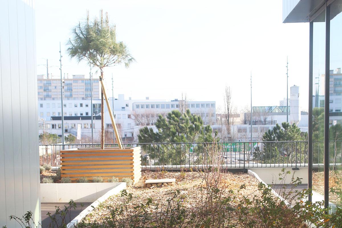 Aménagement terrasse entreprise près de Ikéa Grand Parilly paysagiste