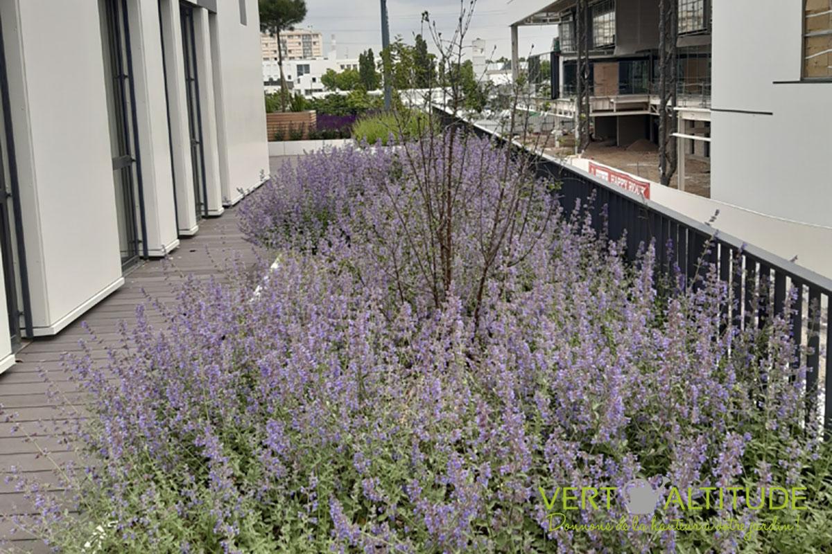 terrasse bureaux entreprise Lyon Grand Parilly paysagiste